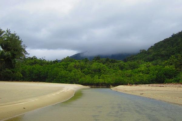 Strand und Regenwald am Cape Tribulation